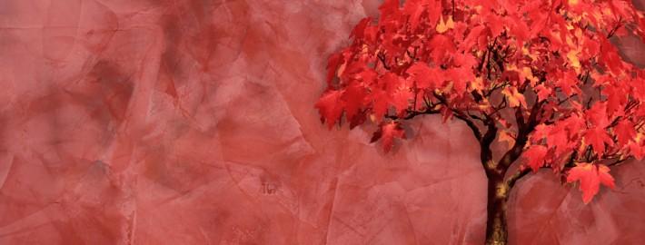 5 мифов о веницианской штукатурке